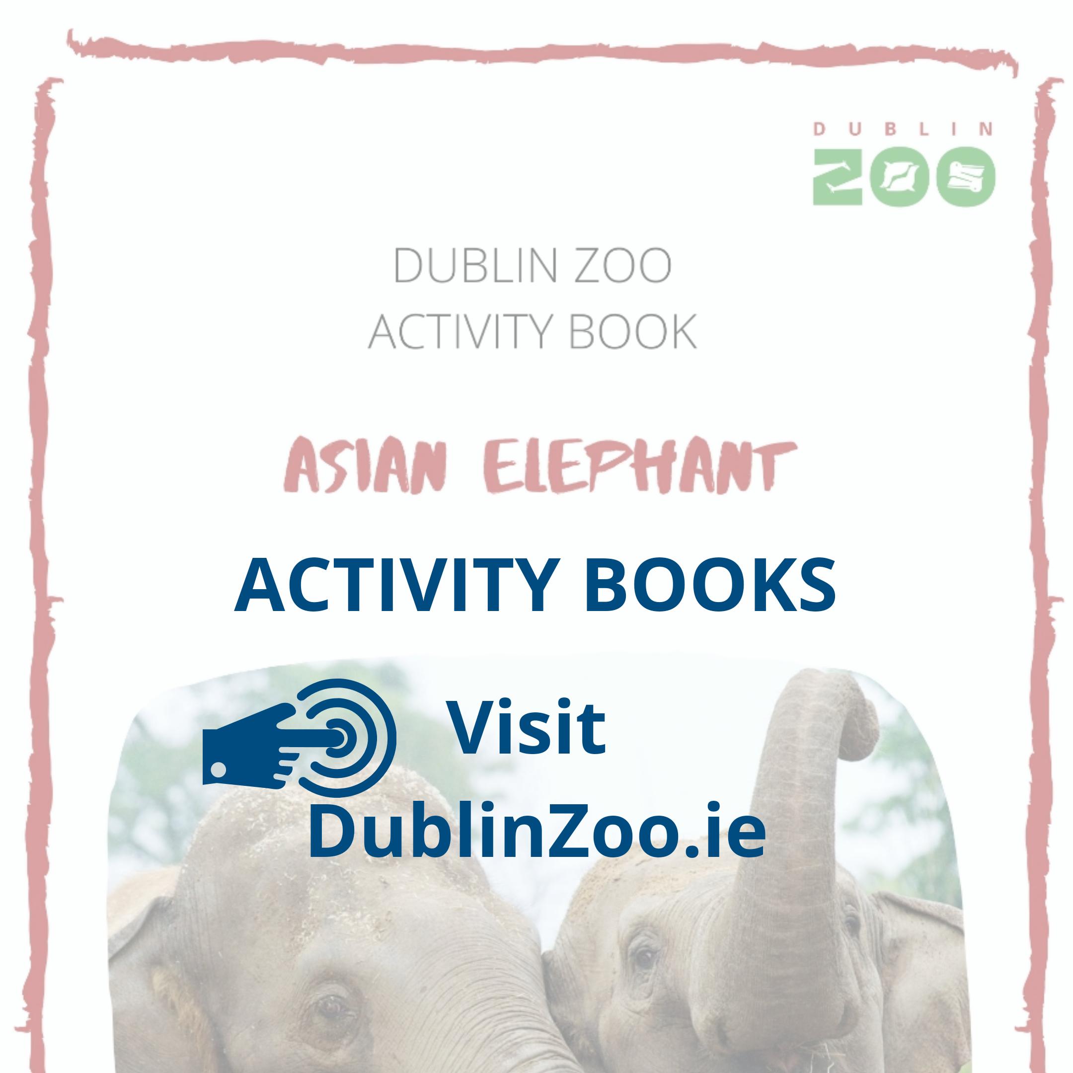 Dublin Zoo Activity Books