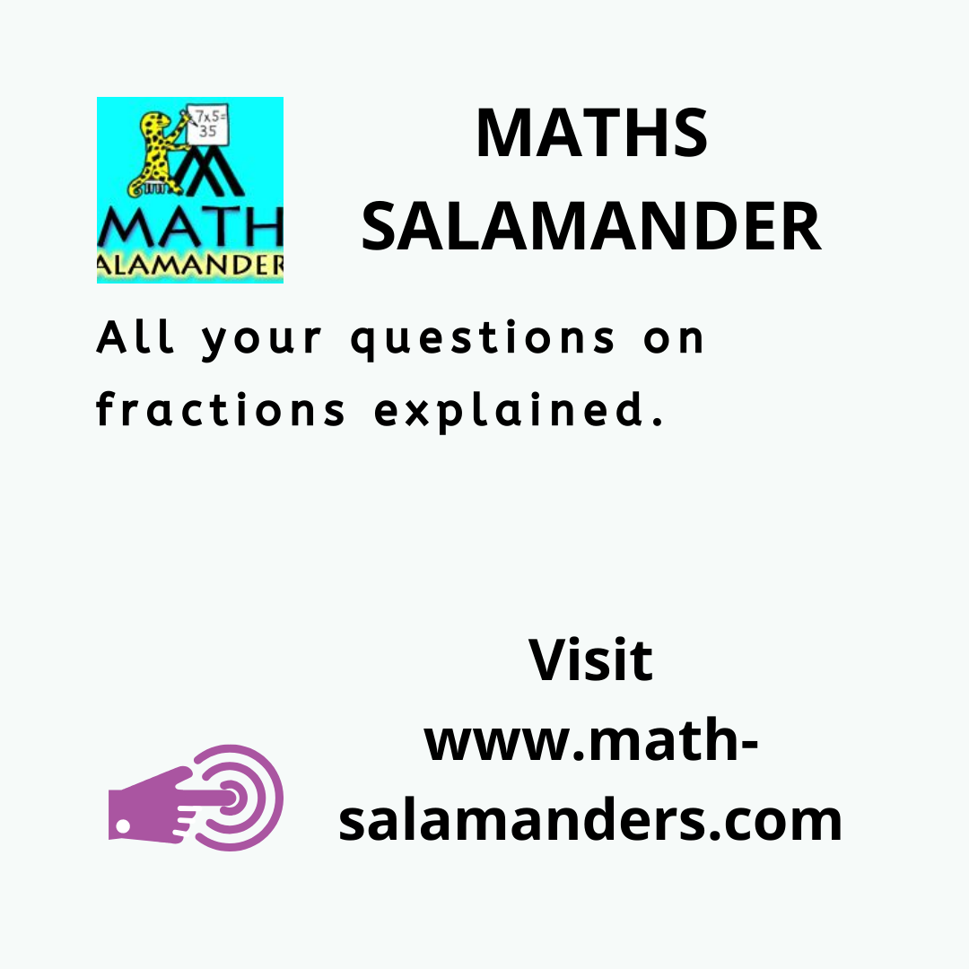 MATHS SALAMANDER